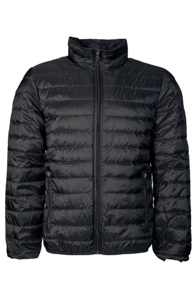 Armani Jeans Puffer Jacket In Black Red Navy And Royal